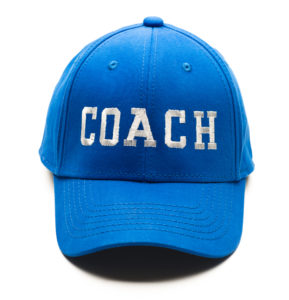 why you need a coach college essay help are there other advantages to engaging a coach